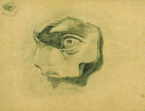 杨梅石膏素描展20件优秀作品