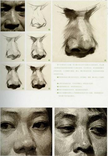 鼻子素描画法