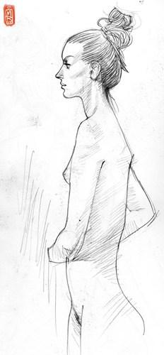 简单女性侧写线条和曲线的女性美