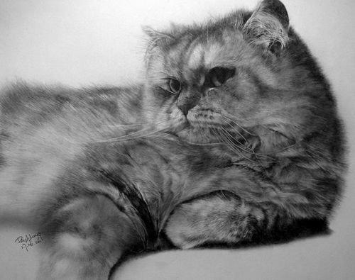 铅笔画:用铅笔画超现实的动物素描