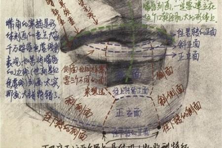 人物嘴的画法 结构分析
