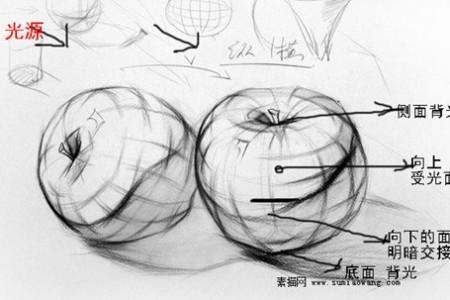 素描苹果画法解析步骤图 以苹果学素描