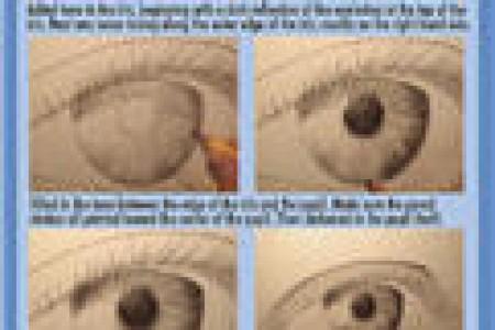 国外人物眼睛画法教程