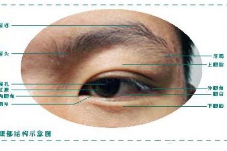 手把手教你画五官-素描眼睛的画法