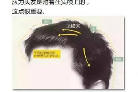 头发的素描画法及重要性