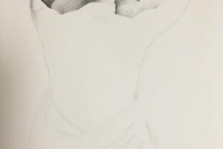 素描女人体背部画法步骤