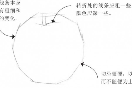 素描排线技巧:线条的二维空间关系