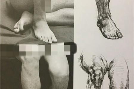 人物腿部各角度照片与结构素描对照图