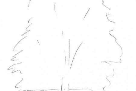 素描简笔画:初学者五步画素描详细步骤讲解