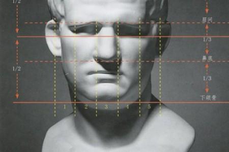 石膏头像 人物头像比例图解教程