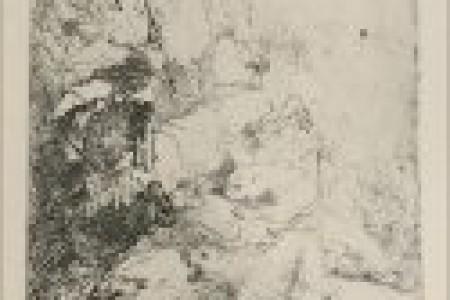 伦勃朗的动物草图有狗,狮子,牛等。