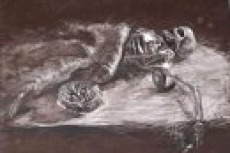 七部杰出的广美素描静物作品