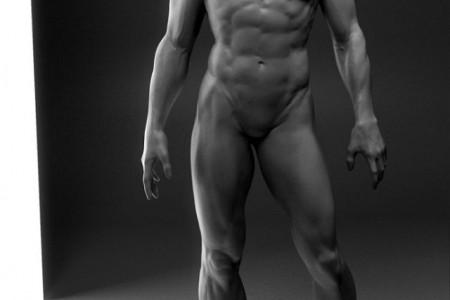 完美人体肌肉结构图