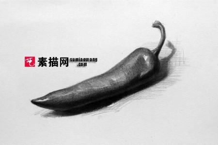 青椒和胡椒素描图