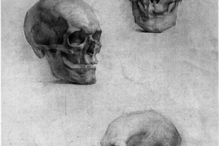 列宾美术学院人物颅骨素描实践