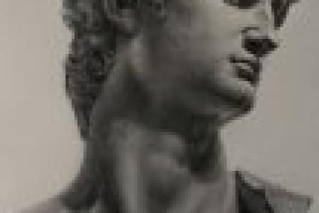 完全打开素描纸,画出大卫的石膏模型。