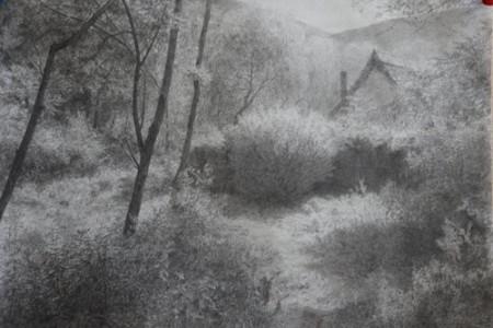 勾勒树木山村的景观。