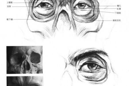 画眼睛的方法