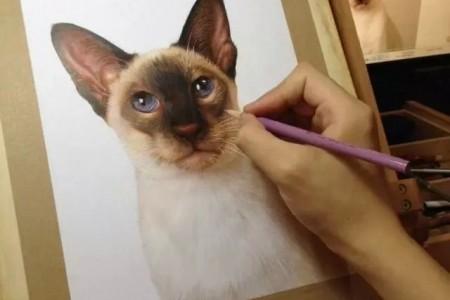 孟祥磊用彩色铅画猫和狗