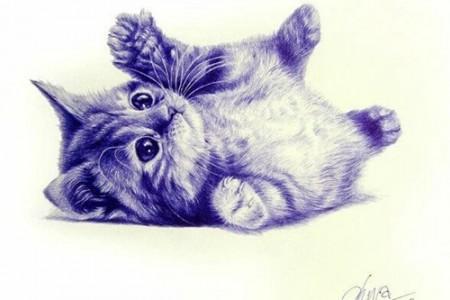 超级可爱的动物:小猫米圆珠笔素描