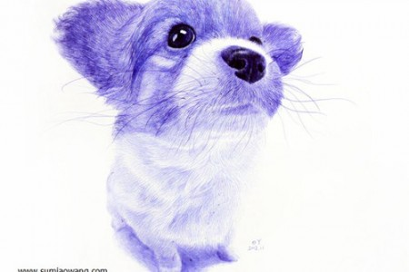 超级可爱的动物:小狗圆珠笔素描