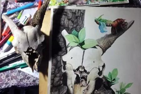 欧阳鹏杰手绘:羊头骨素描水彩画