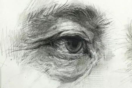 眼睛、鼻子、嘴巴和耳朵的草图