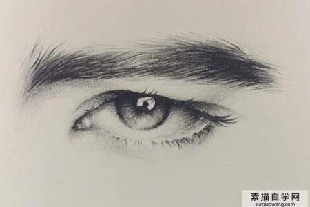 眼睛素描中部分瞳孔高光和眉毛的绘制