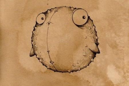 海豚素描可爱海豚鱼简单素描素描