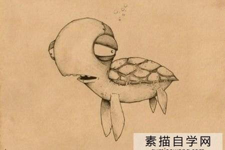 最可爱的小海龟画了一张海龟儿童画