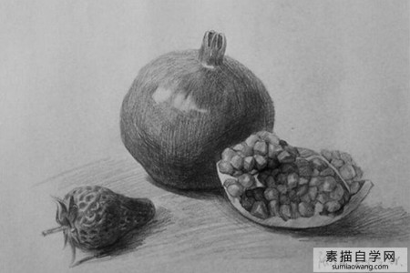 水果:石榴和草莓素描