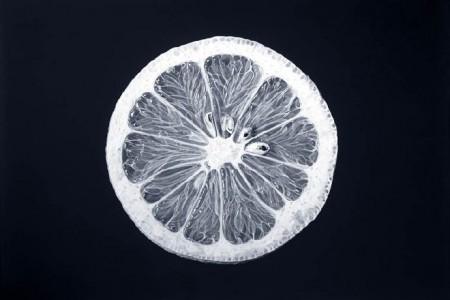 柠檬片草图黑白草图