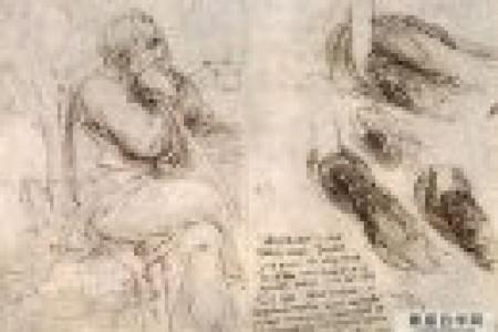 达芬奇人体局部解剖素描