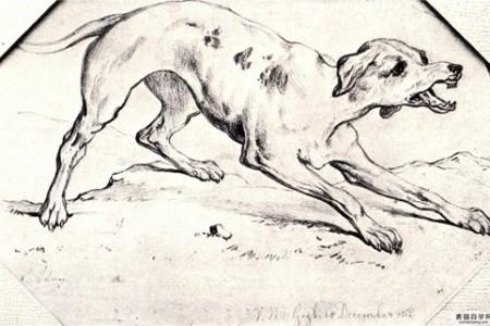 狗素描——文森特·梵高1862