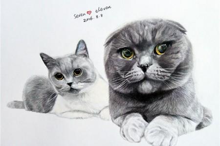 两只可爱猫的铅笔素描非常精致真实。