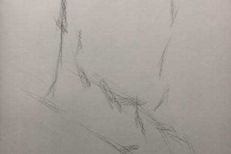 詹姆斯素描图片詹姆斯头像步骤