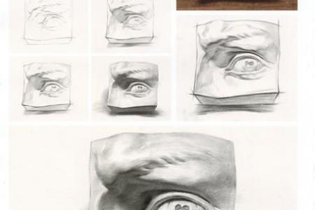 石膏眼草图绘制步骤教程