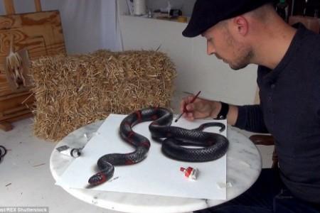 蛇3D立体画超级逼真