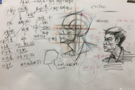 素描头像五官课件分享,高级素描老师精心组织