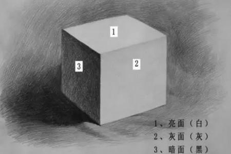 草图的黑色、白色和灰色三面指的是什么?