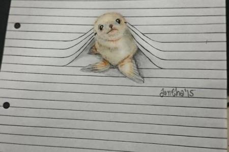 动物素描:当动物遇到水平网格时,会产生什么效果?
